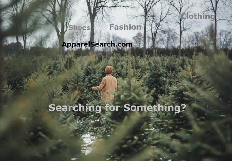 Fashion Search Engines
